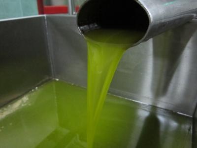Olio pugliese e greco venduto come toscano
