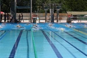 Riapre al pubblico la piscina olimpia di colle di val d 39 elsa for Piscina olimpia a sesto san giovanni